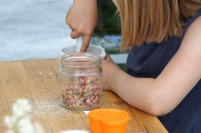 Kräuterkurse für Kinder
